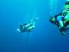 300' Dive
